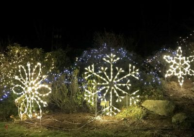 Orleans-Improvement-Association-Town-Green-Snowflakes